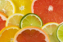 Fresh platter of citrus fruit Stock Photo