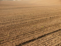 Fresh plough. Autumn plowed field with brown color Royalty Free Stock Photo