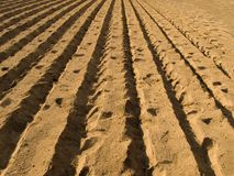 Fresh plowed ground ready for cultivation Royalty Free Stock Image