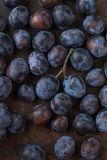 Fresh plum. branch plums on a wooden background. close up Royalty Free Stock Image