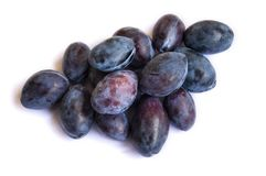 Fresh plum. Close-up of plum fruit on a white background. Dark plum color. Stock Photography