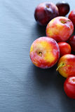 Fresh plum on a dark background Royalty Free Stock Images