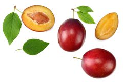 Fresh plum fruit with green leaf and cut plum slices isolated on white background. top view royalty free stock photo