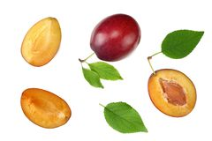 Fresh plum fruit with green leaf and cut plum slices isolated on white background. top view royalty free stock photography