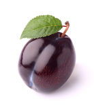 Fresh plum with leaf Royalty Free Stock Image