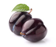 Fresh plum Stock Photo
