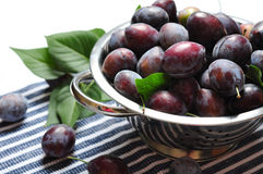 Fresh plum Stock Images