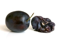 Fresh plum and rotten plum. On the white background stock image