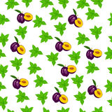 Fresh plum and slice Royalty Free Stock Photography