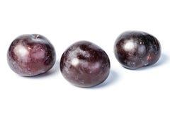 Fresh plum, tilt shift lens Royalty Free Stock Images