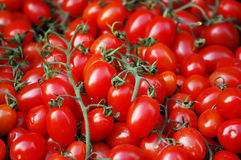 Fresh plum tomatoes at a market. A background of fresh plum tomatoes for sale at a market Royalty Free Stock Image
