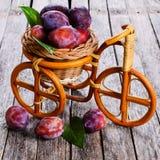Fresh plum Royalty Free Stock Images