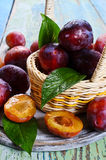 Fresh plum Stock Images