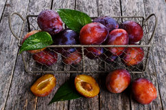 Fresh plum Royalty Free Stock Image