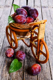 Fresh plum stock photos