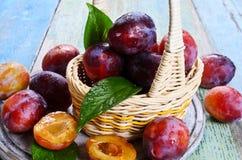 Fresh plum royalty free stock photo