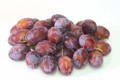 Fresh plums Stock Image