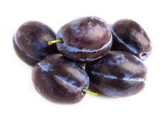 Fresh plums Stock Images