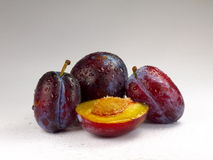Fresh plums. Plums in droplets of water on the table Royalty Free Stock Photo