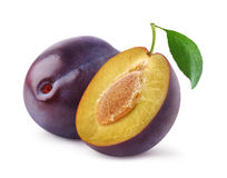 Free Fresh Plums Stock Image - 31889101