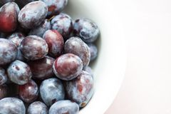 Fresh Plums from above. Fresh plums in a bowl Royalty Free Stock Photos