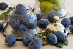 Fresh plums in antique jar. On the table Stock Images