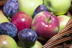 Fresh plums and apples Royalty Free Stock Photography
