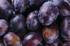 Fresh plums background close up Stock Photo