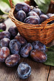 Fresh plums in basket on brown wooden background Stock Images