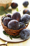Fresh plums in basket Royalty Free Stock Images