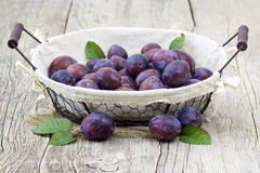 Fresh plums in a basket Stock Photos