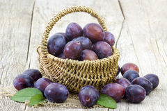 Fresh plums in a basket Royalty Free Stock Image