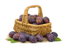 Fresh plums in a basket Royalty Free Stock Photo