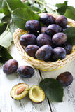 Fresh plums in basket on white wooden background. Stock Photos