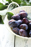 Fresh plums in basket on white wooden background. Royalty Free Stock Photos