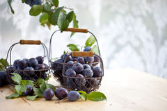 Fresh plums in baskets Royalty Free Stock Images