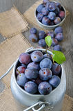 Fresh plums in bowl on the wooden table Stock Image
