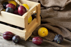 Fresh plums in box on wooden board Royalty Free Stock Photography