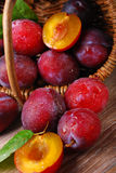 Fresh plums falling out of a basket Royalty Free Stock Photo