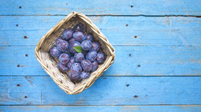 Fresh plums Royalty Free Stock Photo