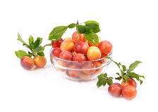 Fresh plums in a glass container Royalty Free Stock Image