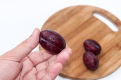 Fresh plums in the hand Royalty Free Stock Image