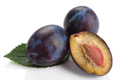Fresh plums isolated Stock Photography