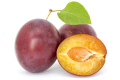 Fresh plums with leaf Royalty Free Stock Photos
