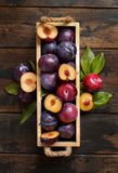 Fresh plums with leaves stock photo