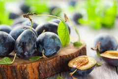 Fresh plums with leaves Stock Photos