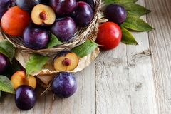 Fresh plums with leaves. On a wooden table close up stock image