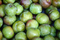 Fresh plums Stock Image