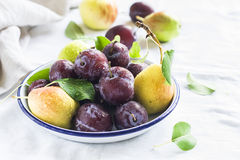 Fresh plums and pears on a white enamel plate Royalty Free Stock Image
