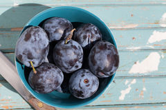Fresh plums. Stock Photography